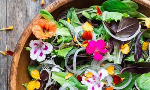 تدابیر تندرستی در فصل بهار برای مزاج گرم و تر