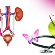 نکات تغذیه ای موثر در بهبود عفونت های ادراری