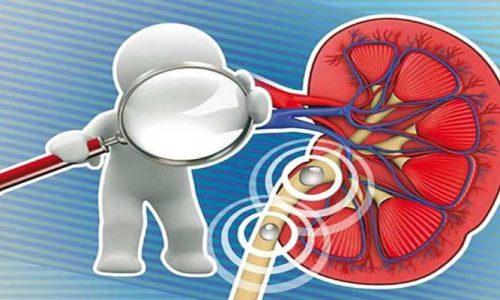 اثر دیابت بر کلیه ها