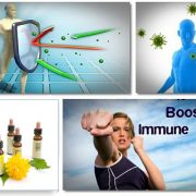 نقش سیستم ایمنی بدن در مقابله با استرس ها-بخش پنجم