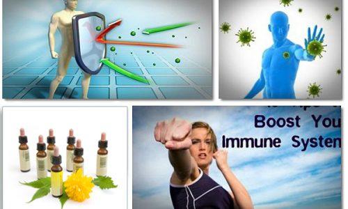 نقش سیستم ایمنی بدن در مقابله با استرس ها-بخش چهارم